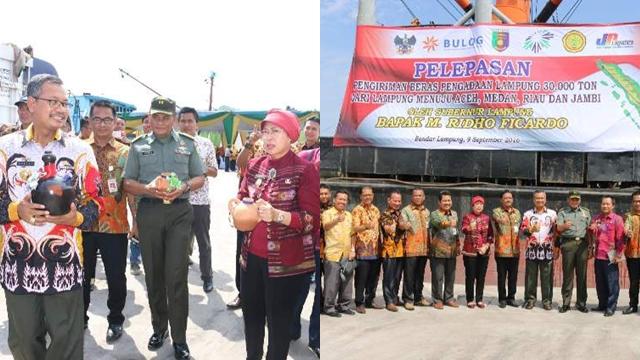 Lampung Tak Hannya Penyangga Namun Penyuplai Bulog
